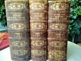 Λεξικόν της Ελληνικής Γλώσσης | Τρεις Τόμοι | 1885 | Α. Σακελλάριου