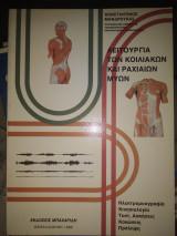 Λειτουργία των κοιλιακών και των ραχιαίων μυών